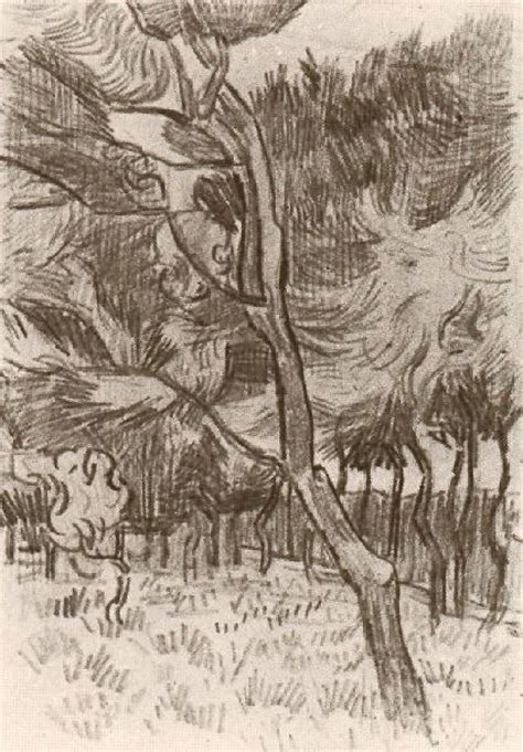Sketches Gogh by Pine Trees In The Garden Of The Asylum 1889 Vincent