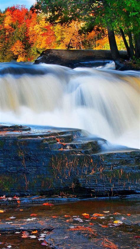 wallpaper forest   wallpaper river waterfall