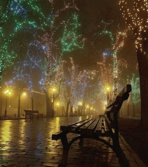 bench night bench christmas lights night travel image 249576 on