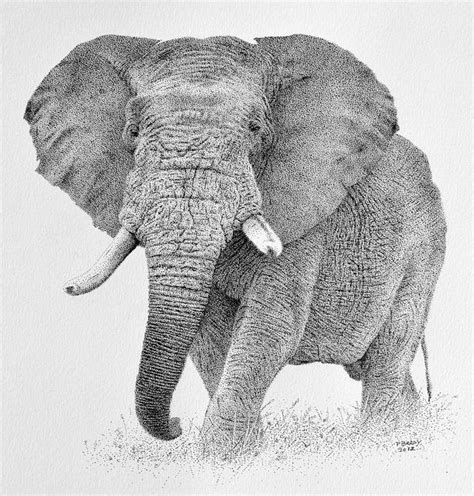 Design Custom Elephant 007 293 best images about elephants on africa