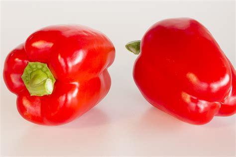 a p fruit growers marni fruit growers bv barendrecht nederland