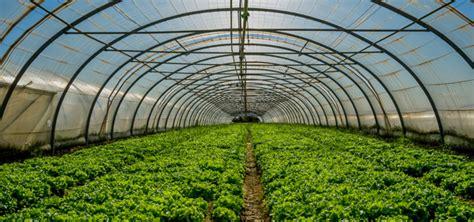 www unicredit it piccole imprese finanziamenti per l agricoltura agevolati o bancari