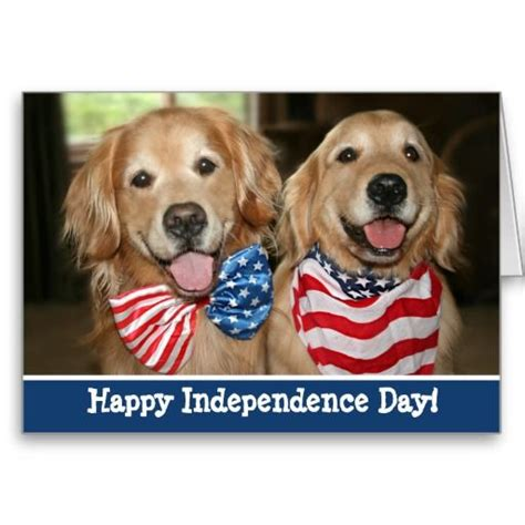 patriotic golden retriever patriotic golden retriever independence day card by augiedoggystore