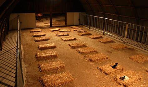 scheune neu verkleiden die alte scheune mit laufstalltrakt und fohlenstallanbau