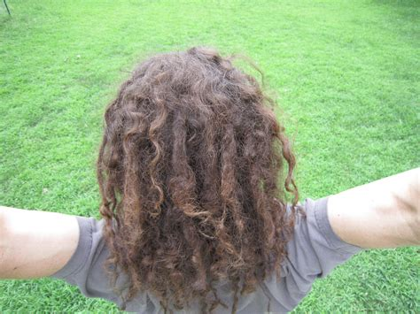 pics of locs growth stages dreadlock growth stages dreadlock growth stages the beauty