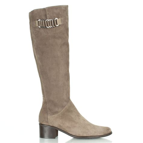 womans knee high boots daniel taupe emming women s knee high boot