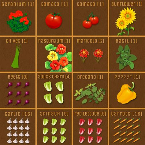Square Foot Gardening Companion Gardening Layout