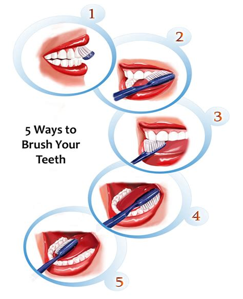 how to clean your s teeth procedure for how to brush your teeth different tooth brushing techniques