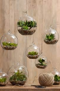 home decoration with plants top 10 succulent decorating ideas