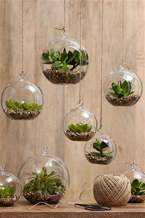Home Decor With Plants Top 10 Succulent Decorating Ideas