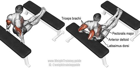 Triceps Banc by Musculation Triceps Top 5 Meilleurs Exercices Pour Triceps