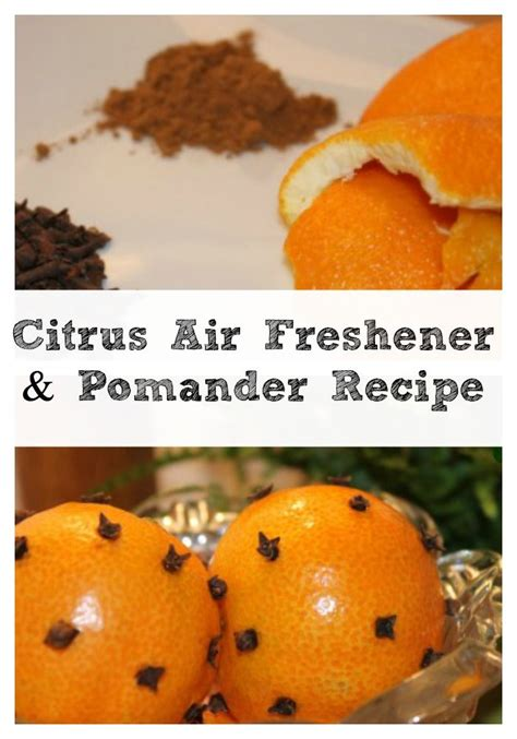 Detox Air Freshener by 1000 Images About Clean Green Recipes On Mint