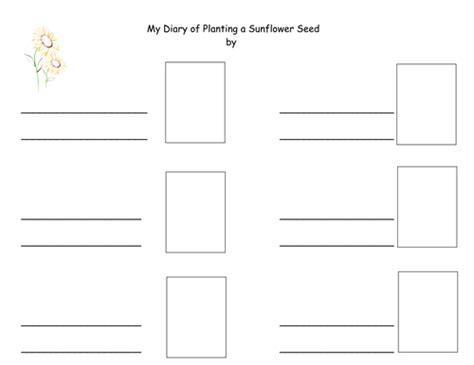 printable diary ks2 my diary of planting a sunflower seed by teacherlenny