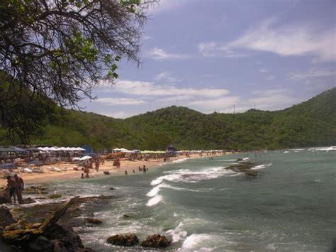 imagenes de higuerote venezuela fotografias de urbanizaci 243 n bah 237 a de buche de la region de