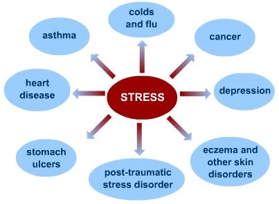 stress the psychology of managing pressure books what is stress s cool the revision website