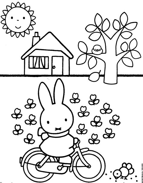 1000 Images About Maisie Loves Miffy On Pinterest Miffy Coloring Pages