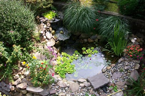 Bassin De Jardin Avec Jet D Eau #15: Small-pond-design-ideas01.jpg