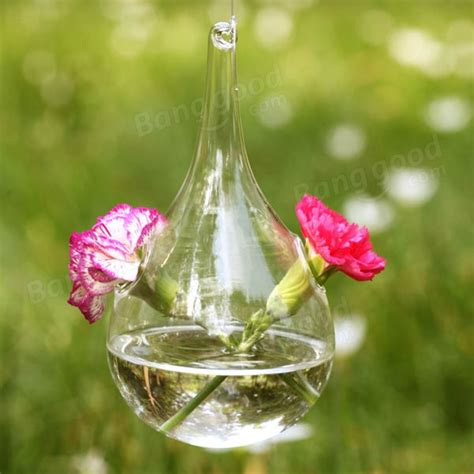 Flowers In Vase With Water by Water Drop Shape Hanging Glass Flower Vase Home