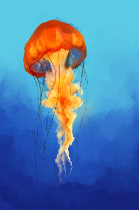 painting drawing jellyfish by musicalcombusken on deviantart