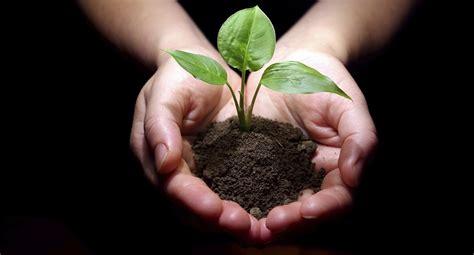Planter Soil by Wwf Sette Richieste Ai Leader Mondiali Viaggio Nell