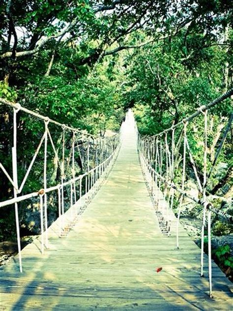 swinging bridge tennessee pin by stacy on follow me to tennessee pinterest