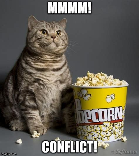Meme Eating Popcorn - cat eating popcorn imgflip