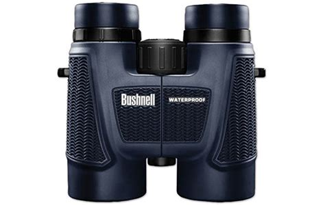 binoculars for bird watchers affordable and practical