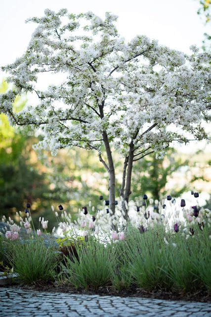 witte thee tuinen the garden ulf nordfjell a classic tuin pinterest