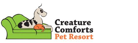 creature comforts pet resort western ny s best dog and cat boarding dog daycare
