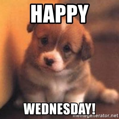 Happy Wednesday Meme - happy wednesday cute puppy meme generator