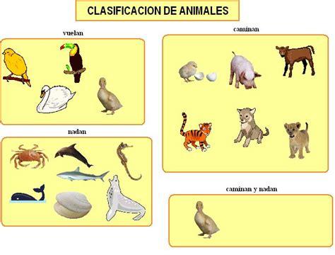 imagenes de animales por su alimentacion los animales en segundo a