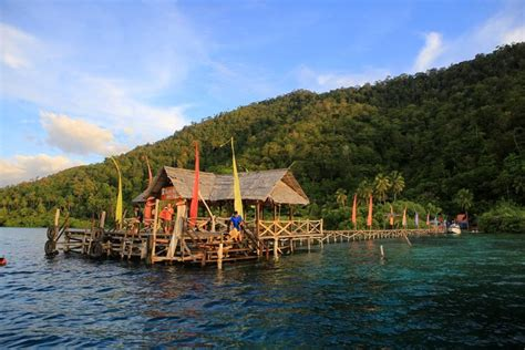 dive lodge raja at raja at dive lodge at yenpapir mansuar island