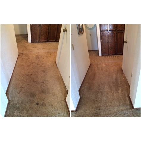 rug cleaning sacramento world class carpet cleaning 89 photos carpet cleaning sacramento ca united states