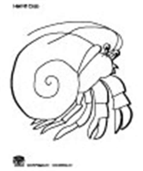 hermit crab template a house for hermit crab activities printables