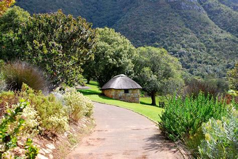 Kirstenbosch Botanical Gardens Panoramio Photo Of Kirstenbosch Botanical Garden