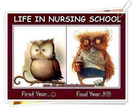 Nursing School Joke - nursing humor nursing humoronly a