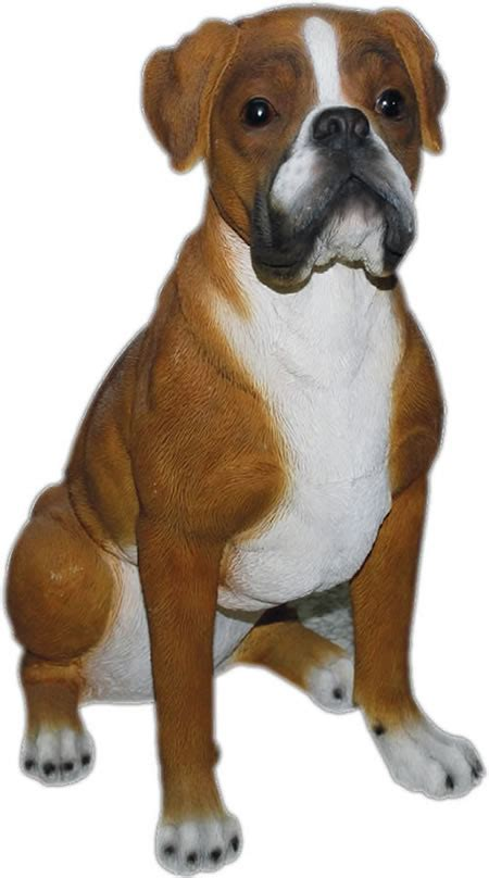 realistic boxer dog statue  natures gallery