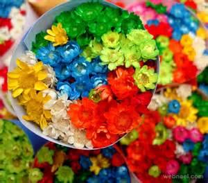 colorful photography colorful photography 21 image