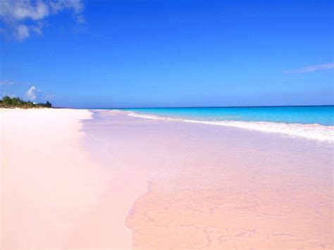 pink sand beach 10 must see unique and unusual beaches around the world
