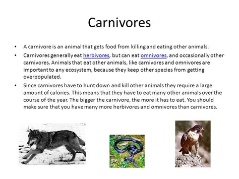 the ethical carnivore my year killing to eat books carnivores herbivores omnivores and decomposers ppt