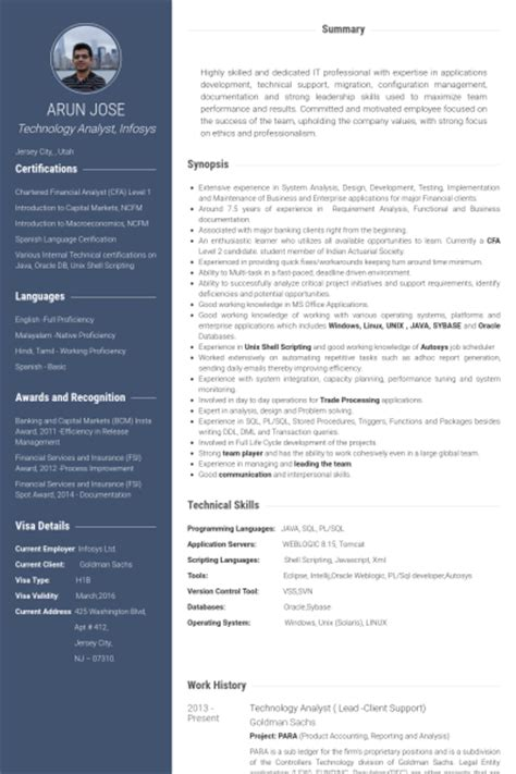 Business Analyst Information Technology Resume by Technology Analyst Resume Sles Visualcv Resume