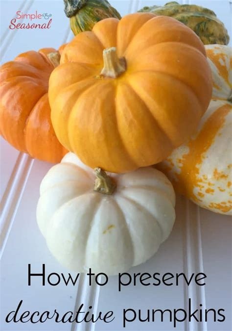 best 28 how to preserve a whole pumpkin how to