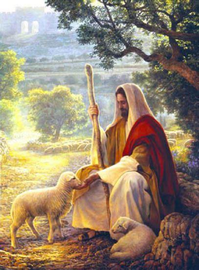 imagenes de jesus con un cordero lecturas del domingo xxxiv nuestro se 209 or jesucristo rey