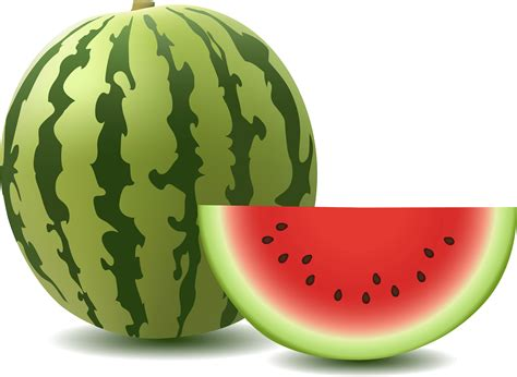 watermelon png download watermelon png image hq png image freepngimg