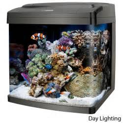 Top Fin 37 Gallon Aquarium Starter Kit   Aquariums   PetSmart
