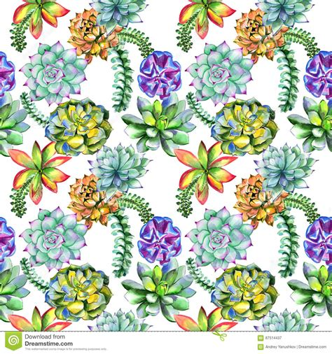 flower pattern names wildflower succulentus flower pattern in a watercolor