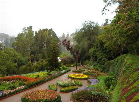 Travel India Ooty Botanical Garden In Ooty Botanical Garden Of India