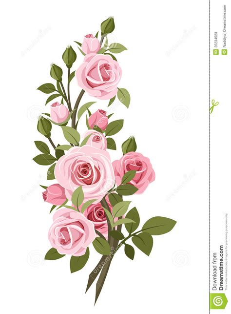 Bud Light Margaritas Vintage Pink Roses Branch Stock Vector Image Of