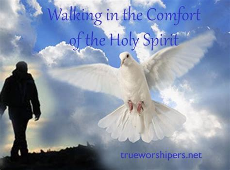 the comfort of the holy spirit 17 best images about the holy spirit on pinterest