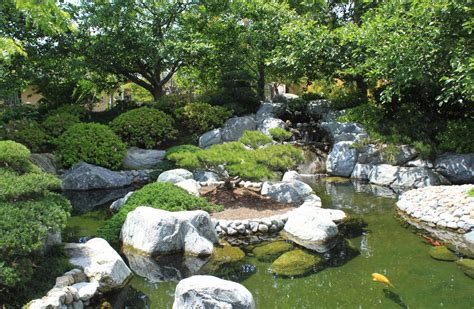 backyard coy ponds japanese zen gardens